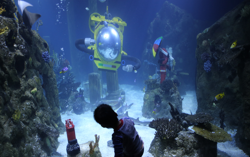 Legoland Sealife